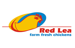 Red Lea Chickens